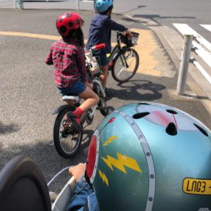 ナットケースヘルメット